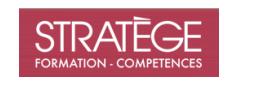 Stratège formation compétences